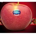 6 stuks Kanzi