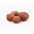 2.5kilo kruim aardappels dore Holland