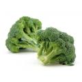 Broccoli 1 struik