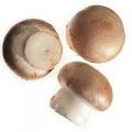 Kastanje champignon 250 gram